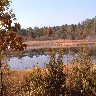 Marsh in Autum.jpg (321498 bytes)